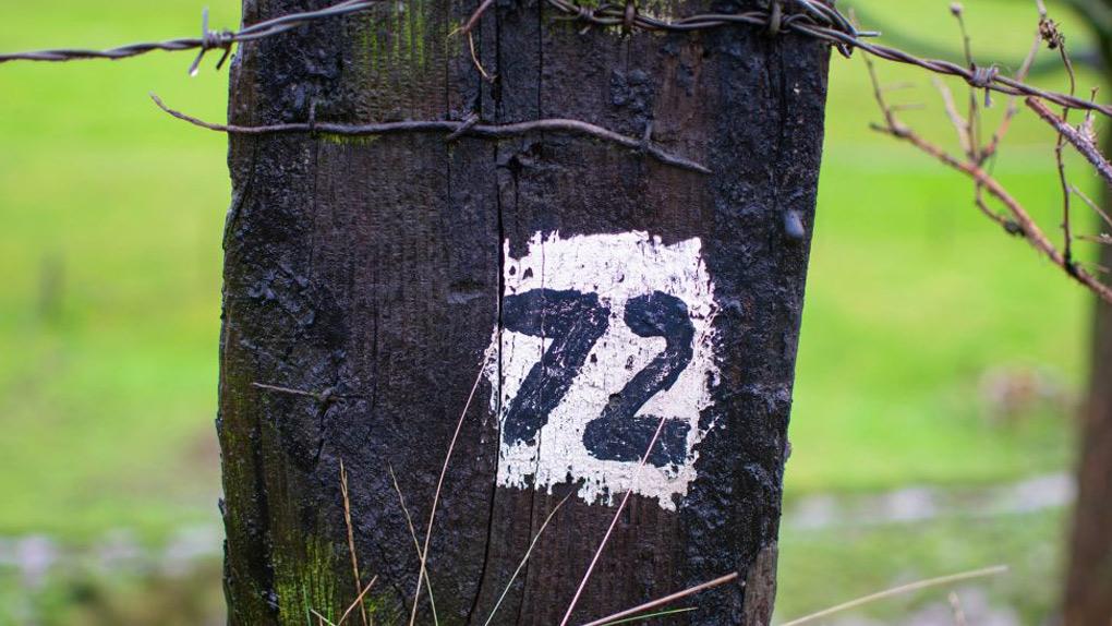 72er Regel – was steckt dahinter?